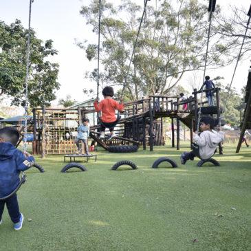 Astroturf Playground